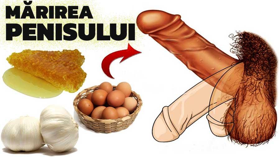 Mărirea penisului, mit sau realitate medicală | trotusaeauto.ro