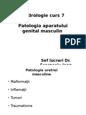 Tipuri de penisuri: care sunt formele penisului la bărbați? - Uretrita
