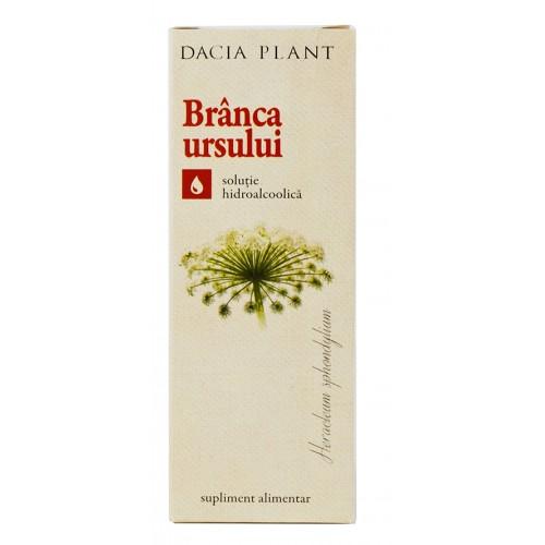 Cele mai bune plante care combat problemele sexuale masculine | trotusaeauto.ro