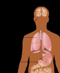 erecție slabă la bărbați și tratamentul acesteia cum se reface o erecție fără pastile