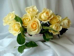trandafir - definiție Argou | dexonline