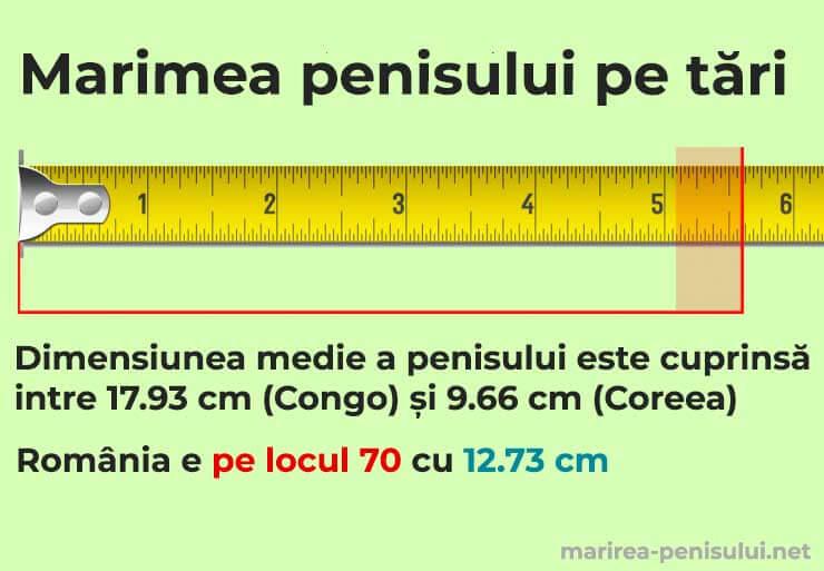 Mărimea medie a unui PENIS în România și în alte țări - STUDIU - trotusaeauto.ro