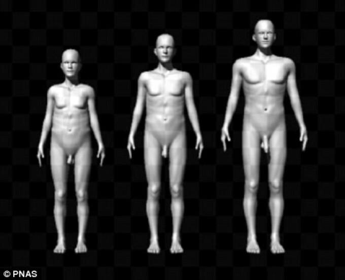 Cercetatorii au vrut sa afle ce anume le atrage pe femei la un barbat. Rezultatul este surprinzator